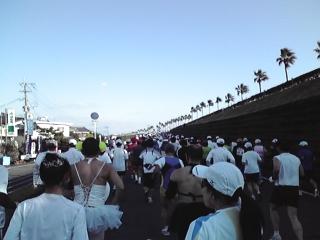 20081214d.jpg