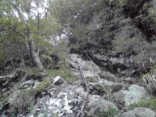 20090531f.jpg