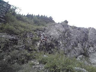 20090627b.jpg