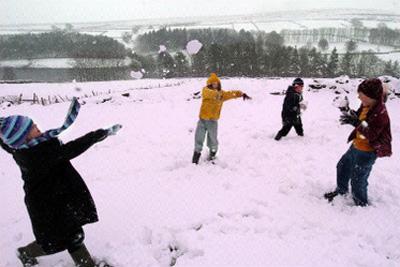 ピンクの雪