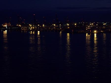 夜のキリン