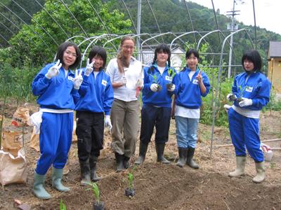夏野菜を植える