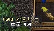 09090804