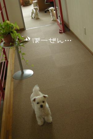 10_11_5939.jpg