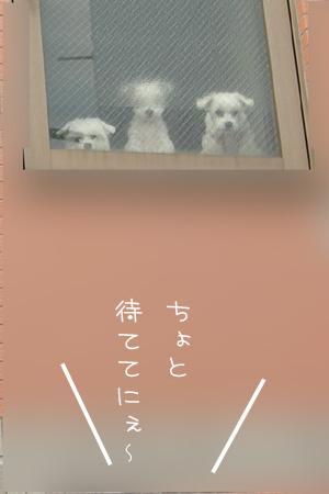 10_11_5941.jpg