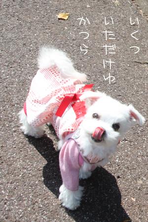 10_13_0191.jpg