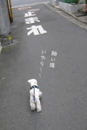 10_14_5988.jpg