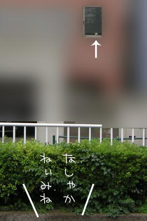 10_14_5990.jpg