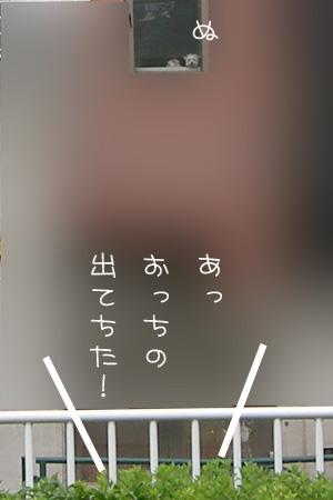 10_14_5992.jpg