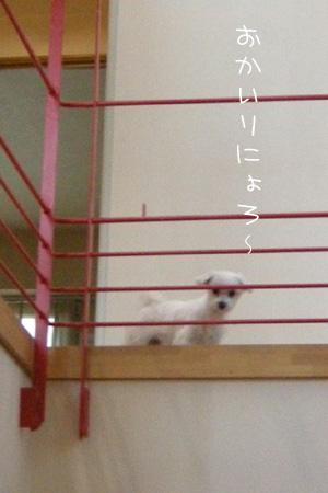 10_14_6000.jpg