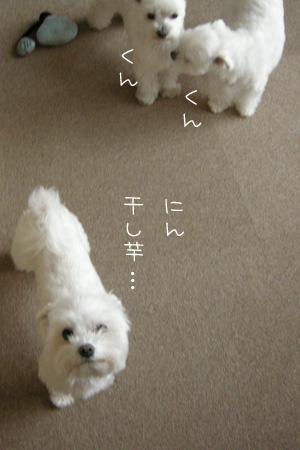 10_14_6021.jpg