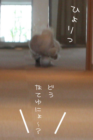 10_14_6087.jpg