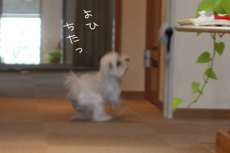 10_14_6133.jpg