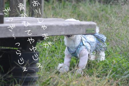 10_17_6401.jpg