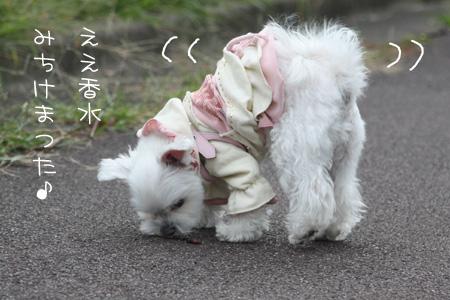 10_18_6490.jpg