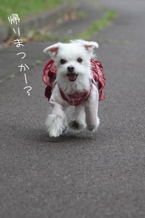 10_19_6601.jpg