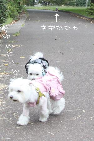 10_19_6608.jpg