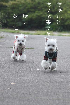 10_20_6649.jpg