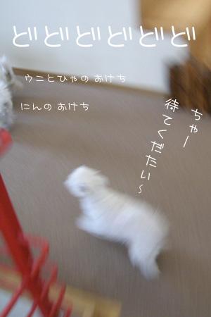 10_21_6736.jpg