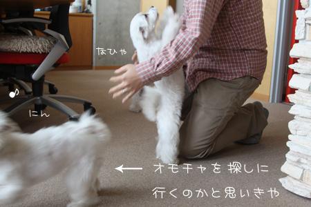 10_22_6838.jpg