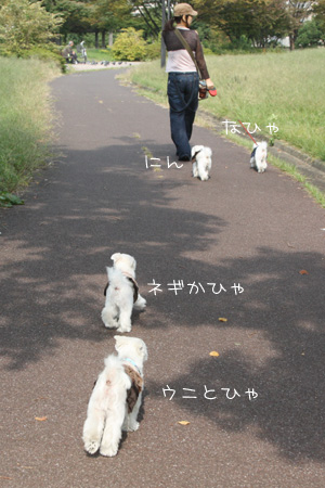 10_22_6934.jpg