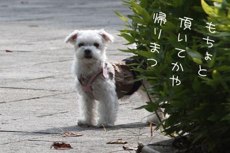 10_22_7084.jpg