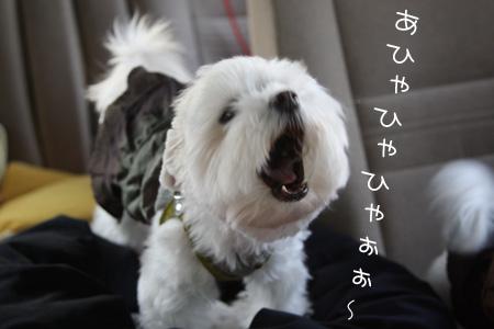 10_22_7153.jpg