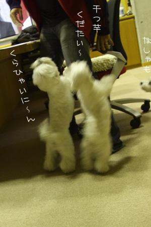 10_23_7164.jpg