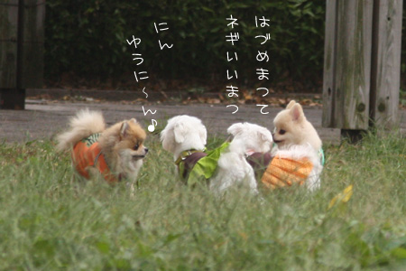 10_23_7216.jpg