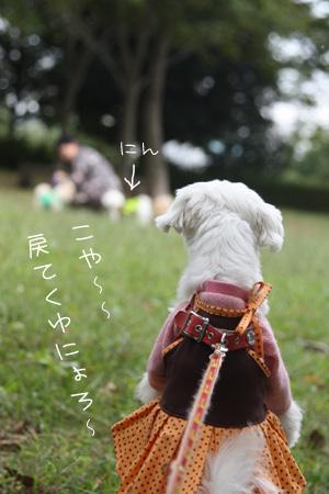 10_23_7220.jpg