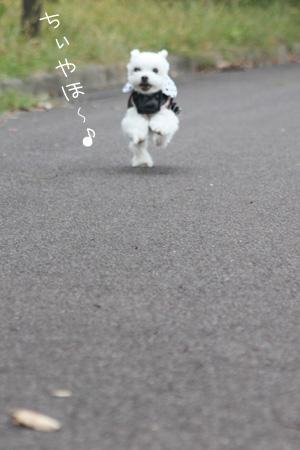 10_25_7341.jpg