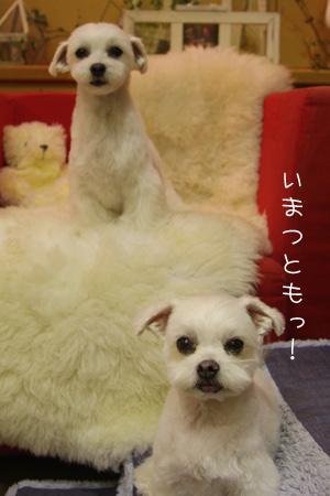 10_26_7454.jpg