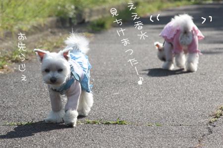 10_29_8486.jpg