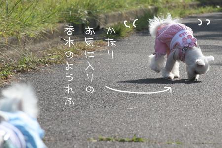 10_29_8488.jpg