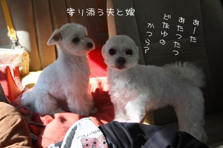 10_30_8634.jpg