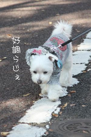 10_30_8685.jpg