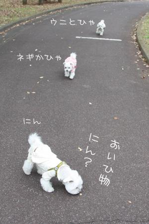 10_31_8940.jpg