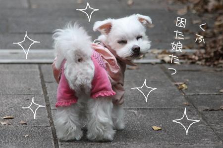 10_31_8985.jpg