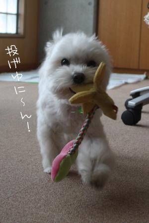 11_10_9889.jpg