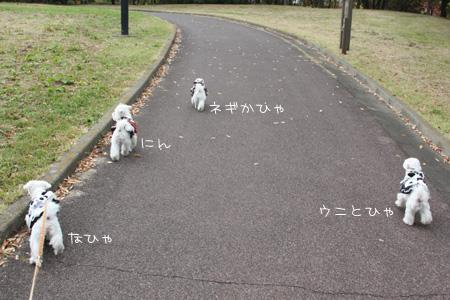 11_11_0330.jpg