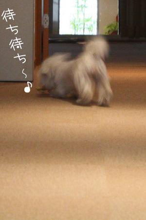 11_16_1017.jpg