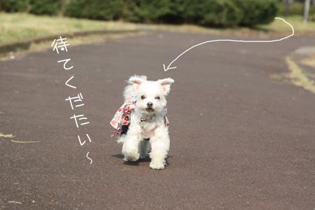 11_18_1423.jpg