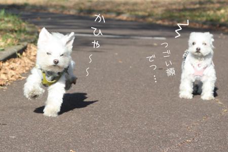 11_20_1620.jpg