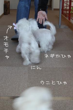 11_21_1691.jpg