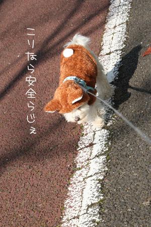11_26_2300.jpg