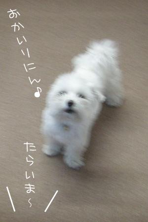 11_28_6820.jpg