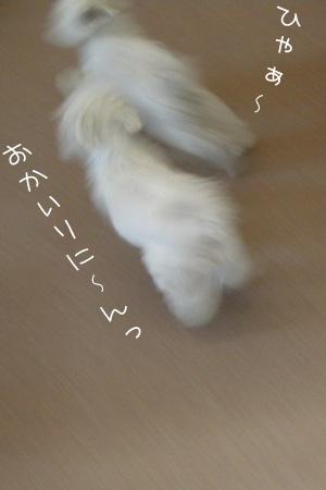 11_28_6822.jpg