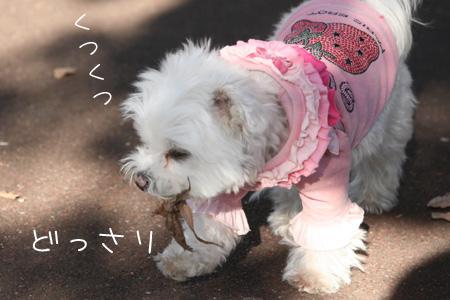 11_30_3092.jpg