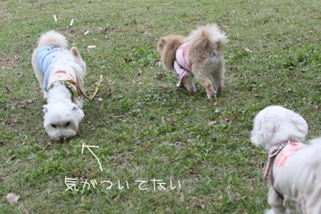 11_3_9221.jpg