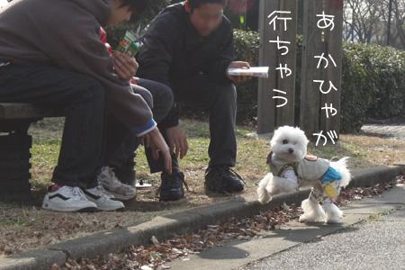 12_13_3211.jpg
